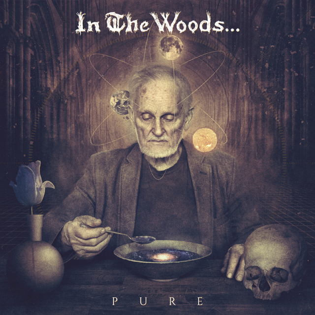 In The Woods… – Pure (2016)