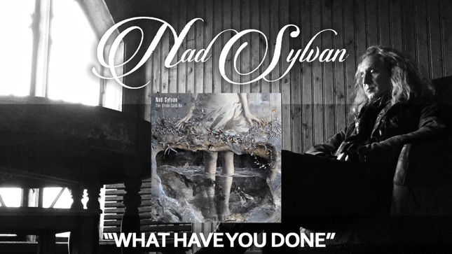 "NAD SYLVAN - ""What Have You Done"" Static Video Streaming"