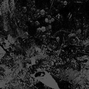 PRIMITIVE MAN / UNEARTHLY TRANCE - Split